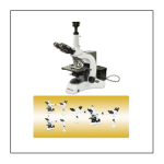 Trinocular Head Biological Microscope 03B-TM200